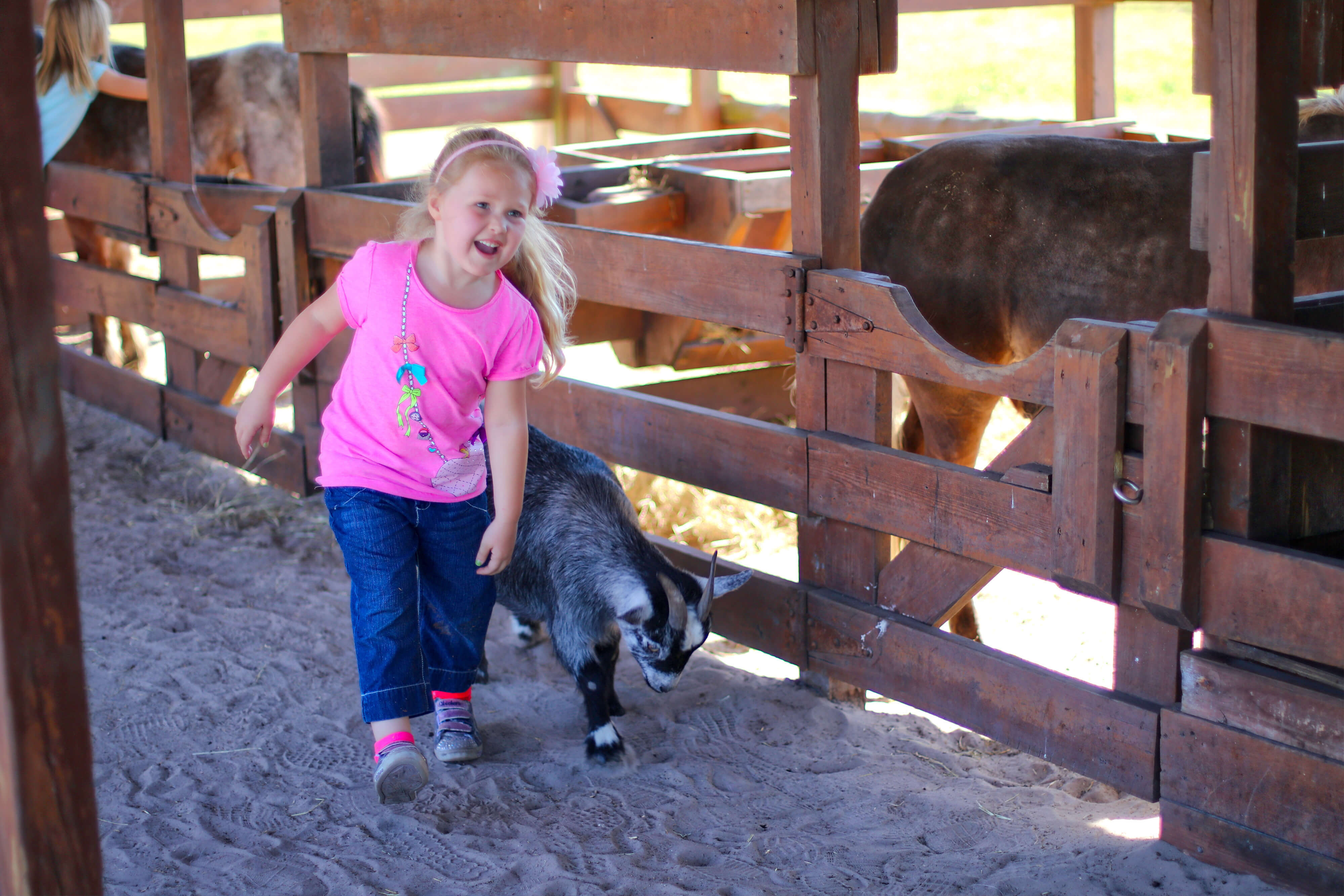 Kids Petting Zoo Near Orlando, FL |  Westgate River Ranch Resort & Rodeo | Westgate Resorts
