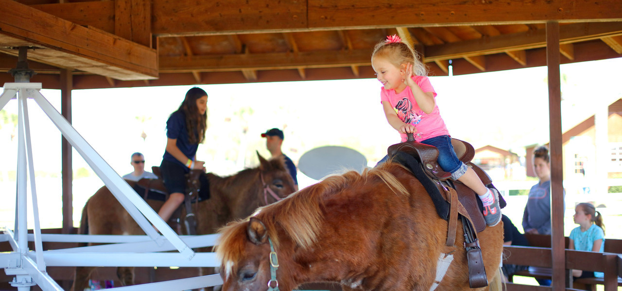 Pony Rides in River Ranch, FL |  Westgate River Ranch Resort & Rodeo | Westgate Resorts