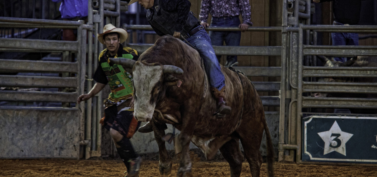 Westgate Rodeo Near Orlando, FL | Westgate River Ranch Resort & Rodeo | Westgate Resorts