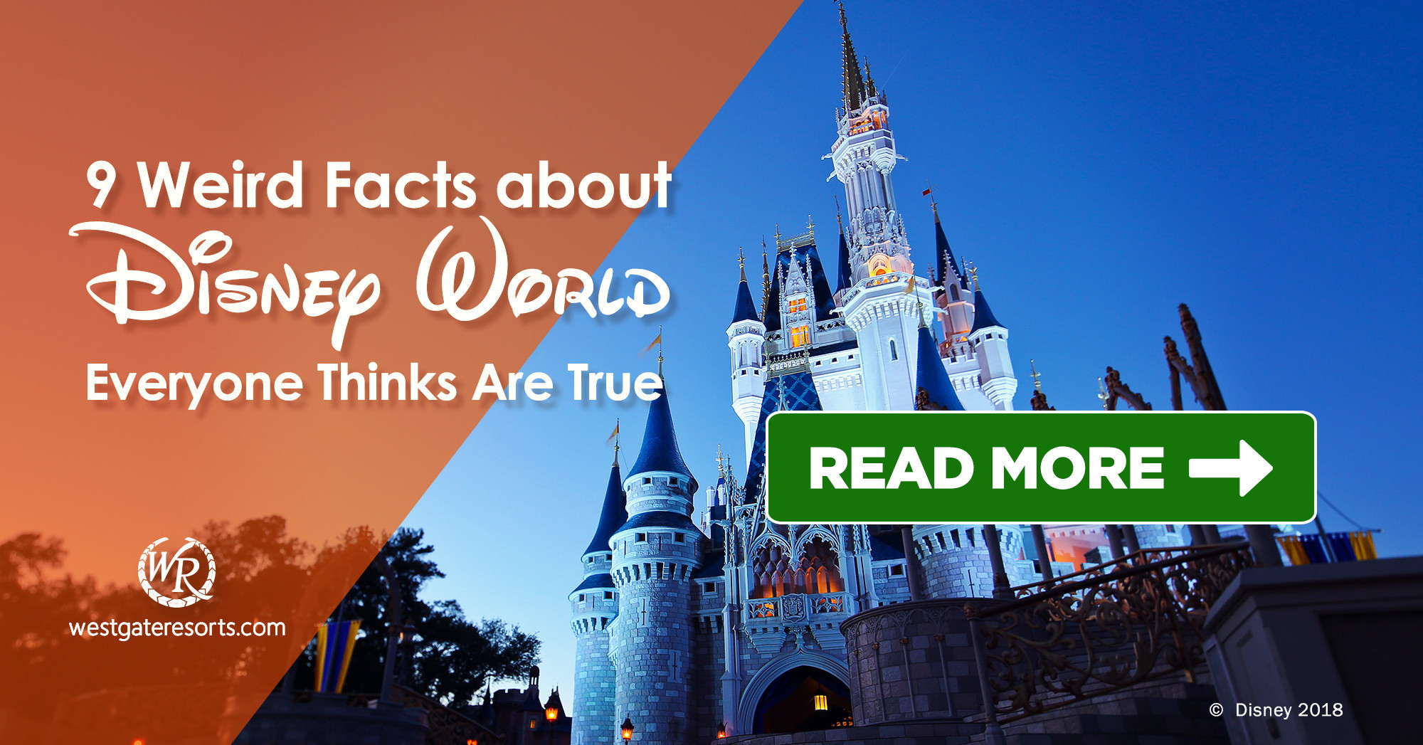 9 Weird Facts About Disney World Everyone Thinks Are True! | Things to Do at Disney World | Westgate Resorts