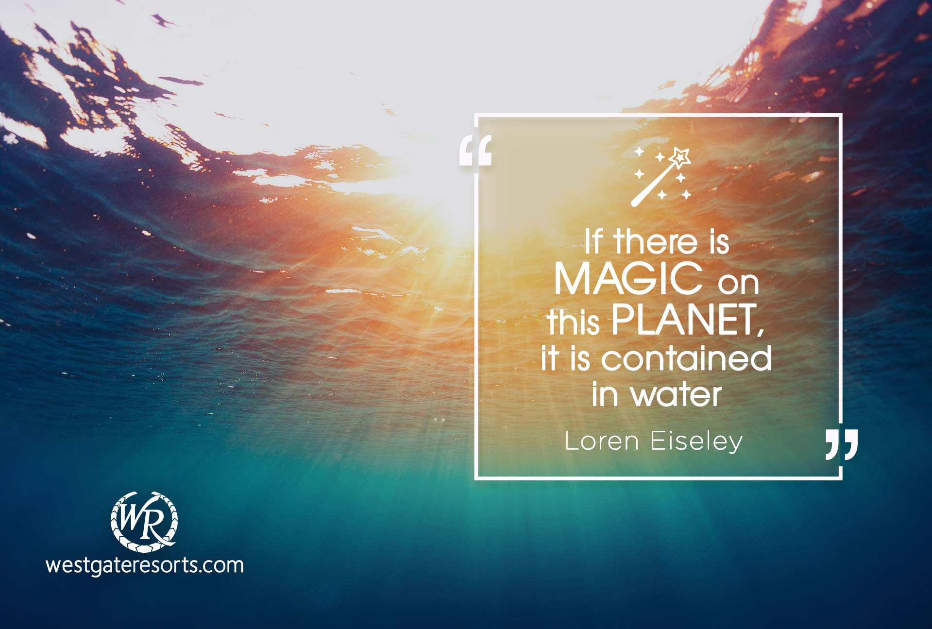 If There is Magic on This Planet, It is Contained in Water.