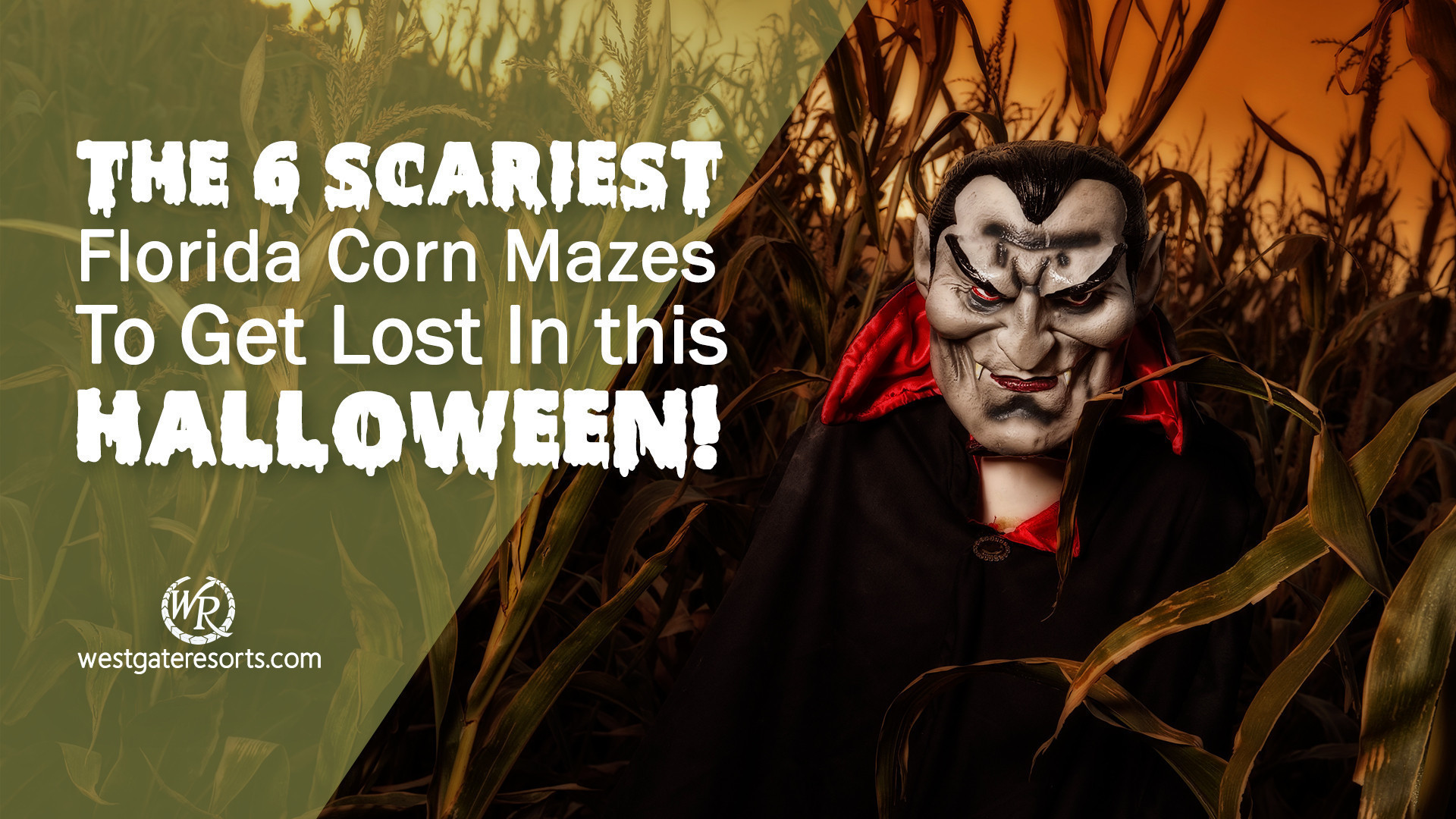 The 6 Scariest Florida Corn Mazes To Get Lost In This Halloween! | Westgate Resorts