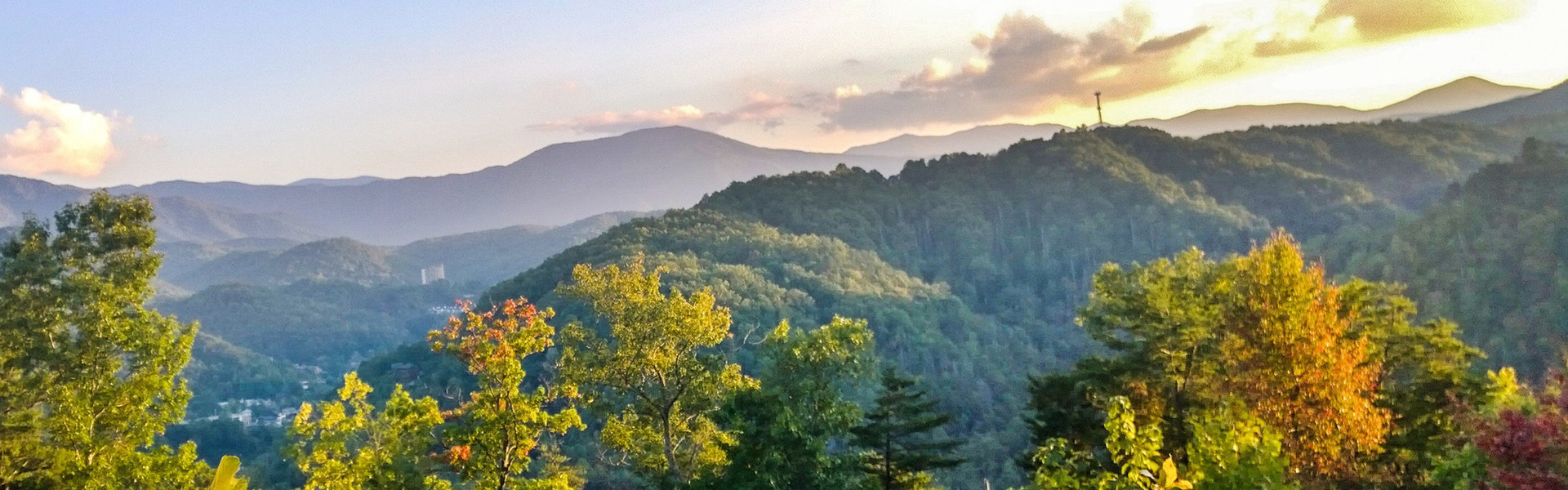 Tennessee Residents Save Up to 15% Off Our Best Nightly Rates | Wild Bear Inn in Pigeon Forge, TN