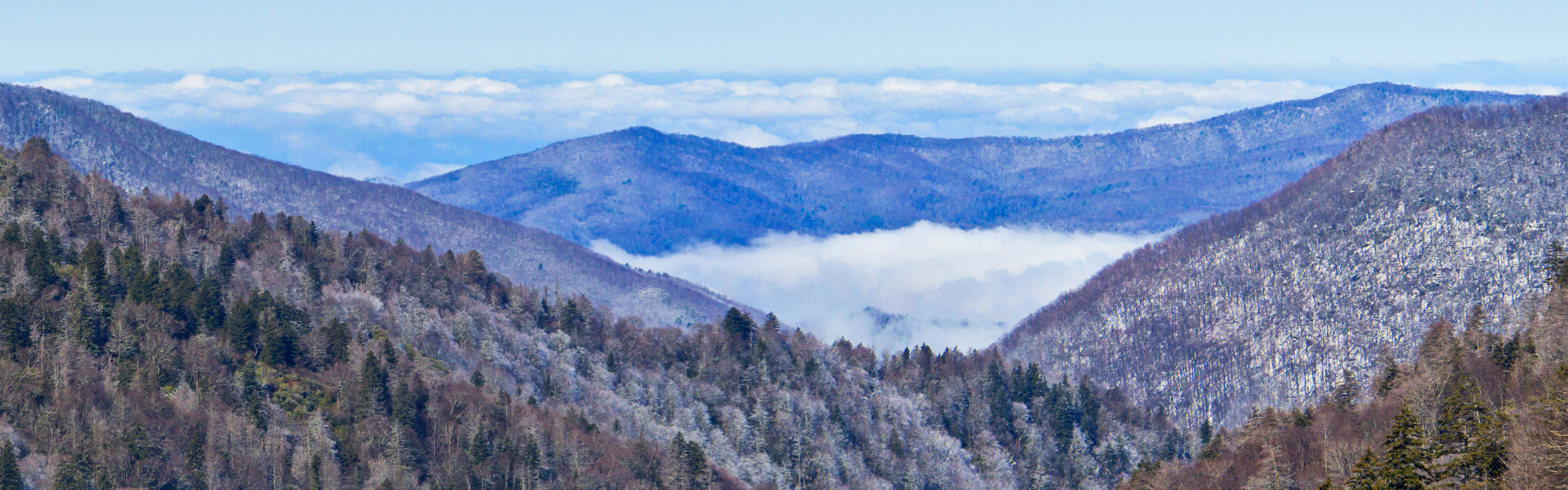 westgate smoky mountain resort rebuilds after wildfires