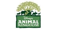 Disneys Animal Kingdom.