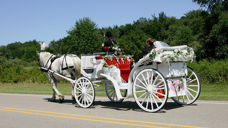 Horse Drawn Carriage at Country Wedding | Bride Guide: 6 Vintage Country Wedding Theme Ideas Right From the Ranch! | Westgate River Ranch