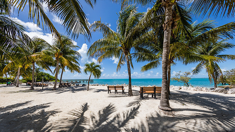 The Florida Keys | The 10 Best Day Trips in South Florida You've Never Done