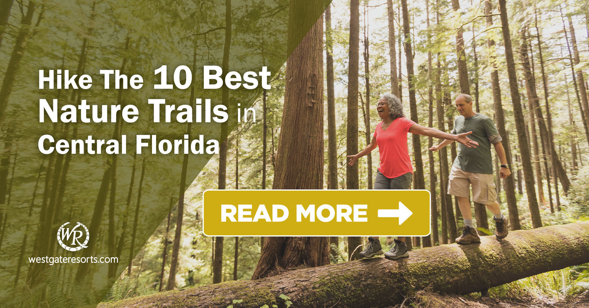 The Best Hiking Trails Near Central Florida For Scenic Hiking, Day Hiking, or Longer Hikes | Best Places in Florida For Hiking