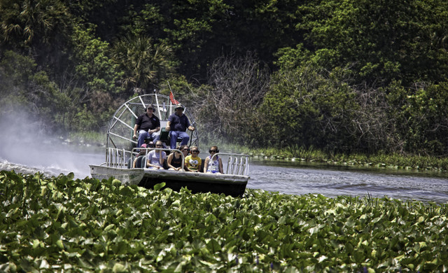 Airboat Rides near Orlando, FL |  Westgate River Ranch Resort & Rodeo | Westgate Resorts
