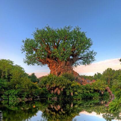 Walt Disney World: Park Hopper Tickets Tickets